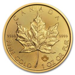 2019 1 oz Canadian Gold Maple Leaf Reverse