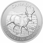 Canadian Silver Pronghorn Antelope